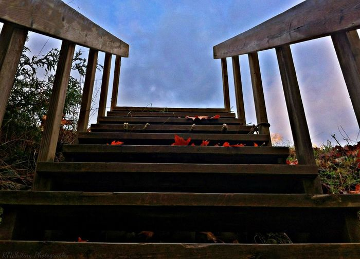These stairs lead me to places where my mind can connect with my spirit without distraction.. My Backyard EyeEm Best Shots - My World Sky Shots Autumn