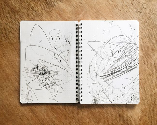 Paper Book Indoors  High Angle View Directly Above Open Education Close-up Page Flower Messy Rectangle Geometric Shape Physical Geography Childsplay Drawing Double Page Spread Creative Pencil Layout Book IPhone Proud Parent