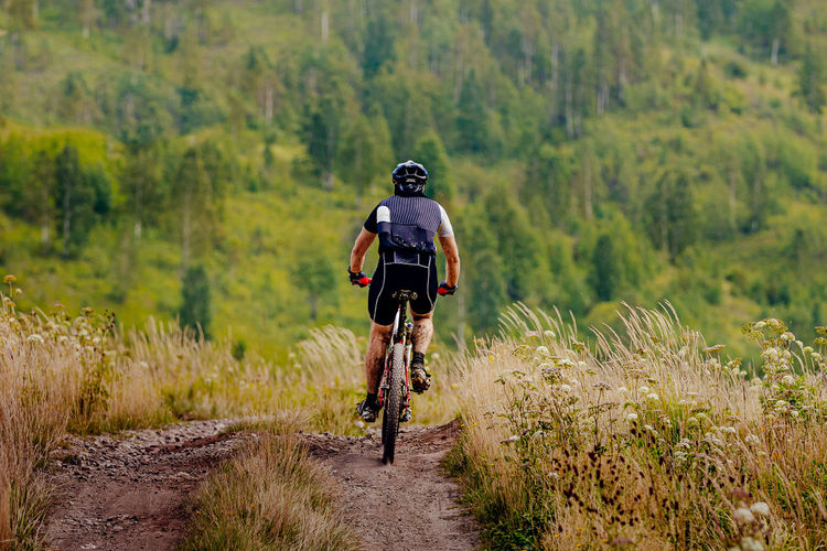 Back male cyclist rides mountain bike trail on background forest landscape