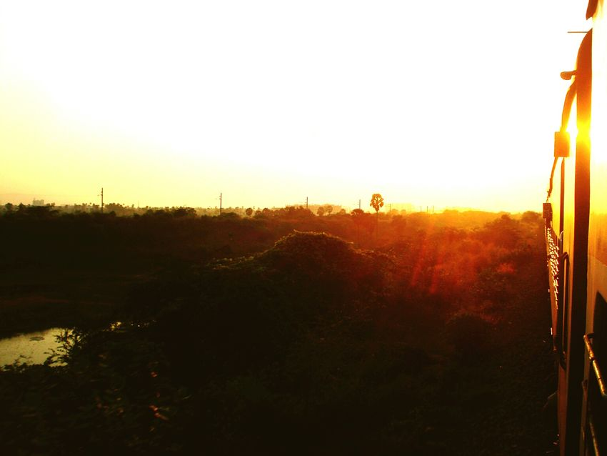 Sunset Tranquil Scene Sun Sunlight Tree nature Calm Greenery Green Green Green!  Greenland Indianphotographer Indianrailwaysdiaries Indianrail Outdoors Atmosphere Vacations Sunsetlover