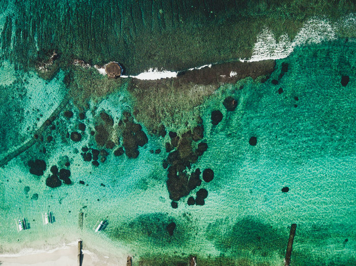 Beach Coral Day High Angle View Marine Nature Outdoors Reef Sea Swimming Turquoise Colored UnderSea Underwater View From Above Water Wavebreaker Waves Waves And Rocks Waves Crashing Waves, Ocean, Nature