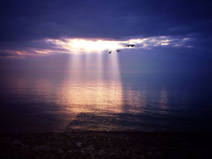 Spotlight Silhouette Explore Canada  EyeEm Best Shots Nature