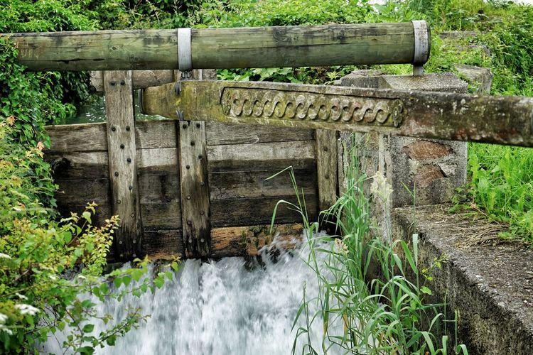 Stream flowing through wooden barrier