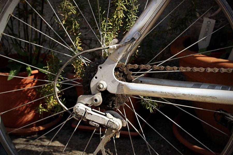 Picoftheday Phrobisantos Picture Photography Bike Stuff Lovingphotography EyeEm Phrobisantos Street