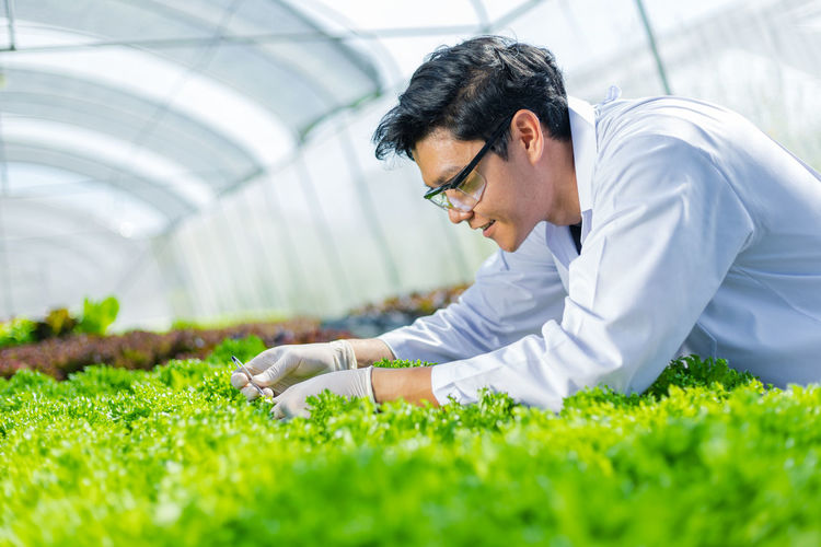 Young botanist working in greenhouse