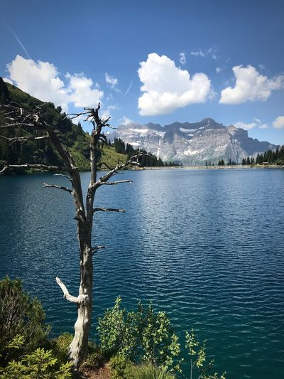 Lonely tree in front of lake Garichti, Switzerland Landscape Switzerland Switzerlandpictures Glarus Summertime Mountain View Swiss Mountains Swiss Alps Lakeside Lake Lake View Water Sky Cloud - Sky Tree Plant Nature Day Lake No People Beauty In Nature Reflection Mountain Outdoors Scenics - Nature