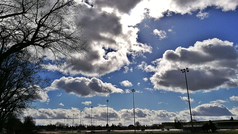 Low Angle View Sky Cloud - Sky Flying No People Nature Outdoors Bird Day Berlin Mariendorf Trabrennbahn Neighborhood Map