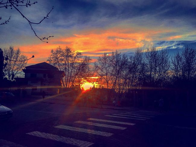 Sunset Sky No People Transportation Outdoors Tree Bare Tree Built Structure Cloud - Sky Building Exterior Road Nature Architecture Beauty In Nature Day