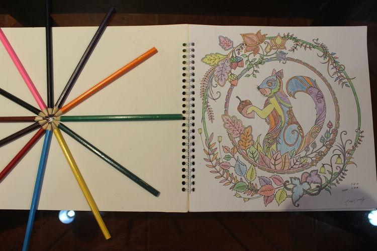Creativity Multi Colored Part Of Single Object