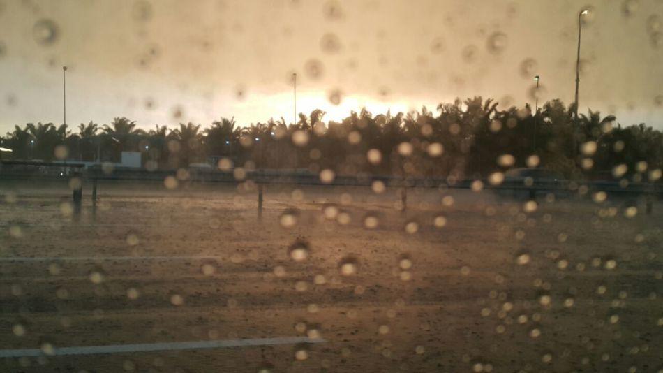 Rain Wet Water Outdoors Rainy Season Nature Day Malaysia