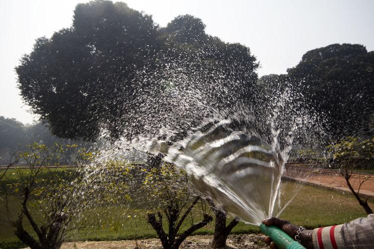 Water splashing in park against sky