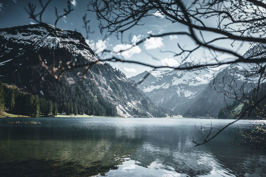Vilsalpsee Alpen Austria Berge Tannheimer Tal Tirol  Alps Beauty In Nature Day Environment Lake Landscape Mountain Mountain Range Nature Outdoors Scenics - Nature Tranquil Scene Tree Tyrol Vilsalpsee Water Österreich