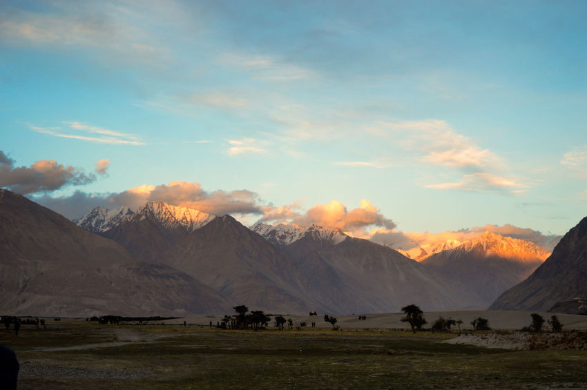 Himalayas India Ladakh Nature Beauty In Nature Blue Cloud - Sky Domestic Animals Landscape Mammal Mountain Mountain Range Nature No People Outdoors Scenics Sky Sunrise Sunset Tranquil Scene Tranquility