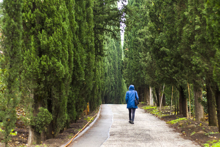 Woman in the botanic garden and park, trees and casual young girl portrait in garden during rain