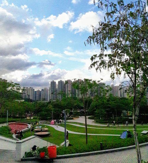 Hang Hau Park Tree Sky Architecture Building Exterior Cloud - Sky Grass Built Structure