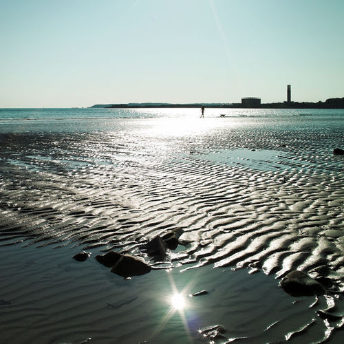 shooting into the sun a dog walker moves across the shoreline and ripples in the sand make up the foreground Beach Contre-jour Dog Walker Jersey Power Station Ripples Ripples In The Sand Sea Sun Flare Sunny Day