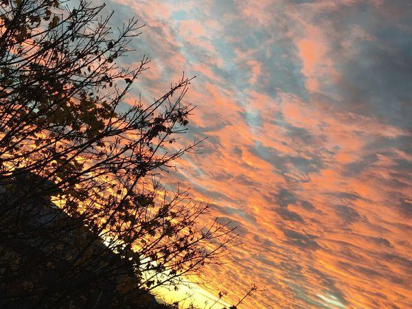 Dawn Sky Stockholm, Sweden Godaminnen Beauty In Nature First Eyeem Photo