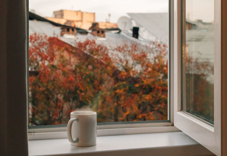 Trees and coffee seen through glass window