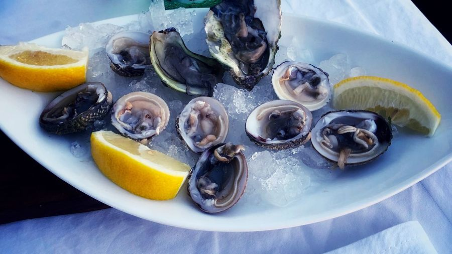 Oysters and sea