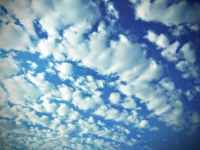 Low Angle View Sky Beauty In Nature Scenics Cloud - Sky Tranquility Tranquil Scene Cloud Cloudscape Backgrounds Blue Nature Majestic Full Frame Day Sky Only Cloudy Outdoors Non-urban Scene Heaven