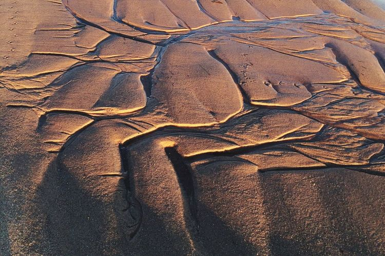 Nature Low Tide Lowtide  Water Pattern Ocean Mark Carved Water Shaped Beach Beachphotography Walk On The Beach  Walk On Water Sand Sand & Sea Sand & Ocean Carved In Sand Sand Art Nature Shaped Sand Print Cape Cod Sand Color
