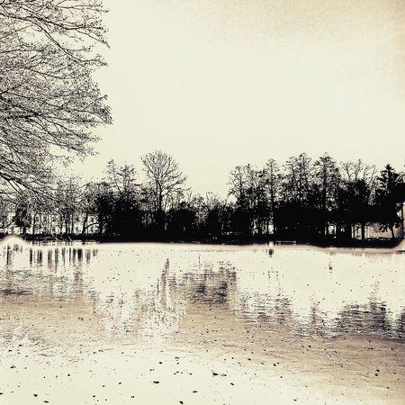 February Dukeorii Poland Zwierzyniec Winter Wintertime