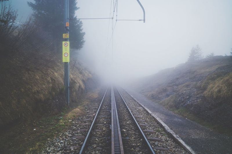 Railway Forest Tree Smoke Nobody Transportation Nature No People Beauty In Nature Fog Landscape Cold Temperature My Year My View