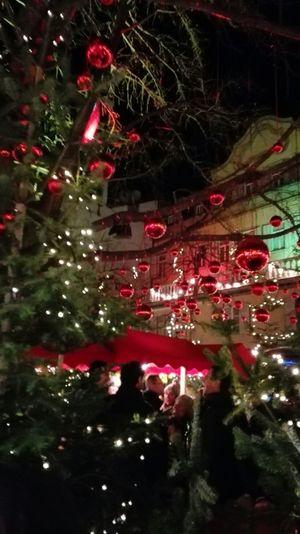 Bolzano - Bozen Bosco Incantato Südtirol Trentino Alto Adige Mercarino Di Natale Bozen Hello World Christmas Lights Eyem Chistmas Christmas Lights!  I Love Bolzano -bozen