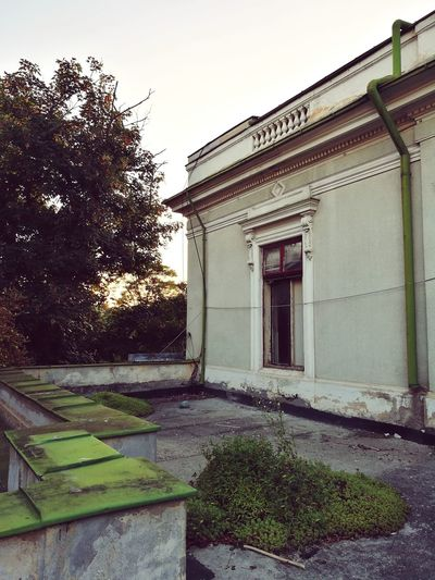 Architecture Plant Outdoors Abandoned Places The Week On EyeEm No People Architecture Onset Built Structure Sky