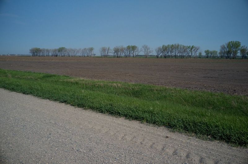 Dirt Road By Agricultural Field Against Clear Blue Sky