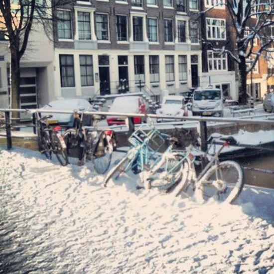 Igers IgersVenezuela Urbangangfamily Instagram Igers_ve Istalike Bikes All_shots Statigram Holanda Photo Gf_ve Gf_daily