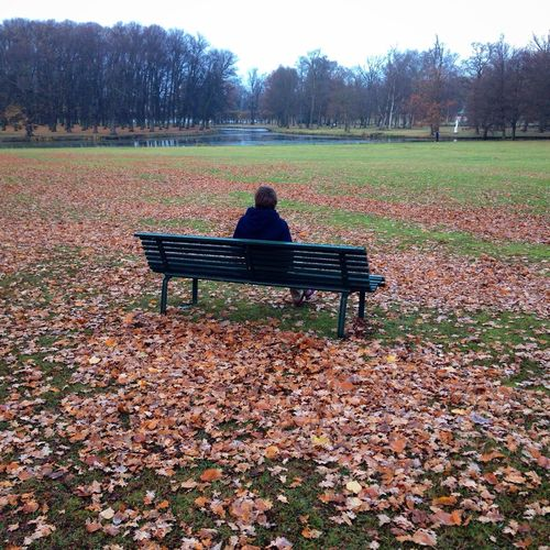 Waiting MADE IN SWEDEN Autumn Fall Beauty Autumn Colors