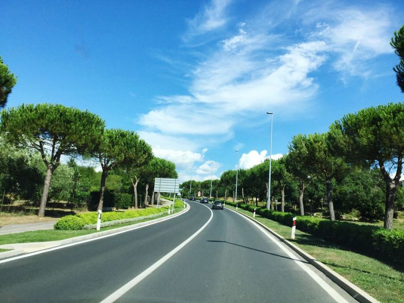 Road Tree The Way Forward Transportation Sky Car Nature Day No People Growth Outdoors Green Color Grass City Palm Sun Summer Nature Tree Croatia Beauty In Nature Beautiful Roadtrip