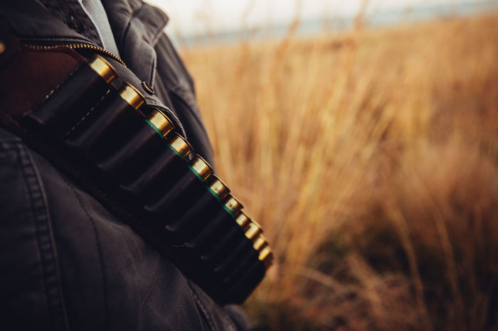 Close-Up of cartridge with golden bullets and copy space in grassland Ammunition Armed Bullet Cartridge Close-up Crime Equipment Firearm Gear Grassland Gun Hobby Hunter Hunting Loading Nature Preparing Rifle Selective Focus Shot Gun Sniper Sport Weapon Wild Animal Wildlife