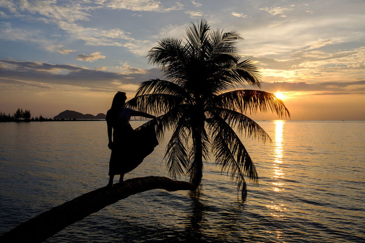 Silhouette Woman Sitting Palm Tree At Beach Against Sky During Sunset
