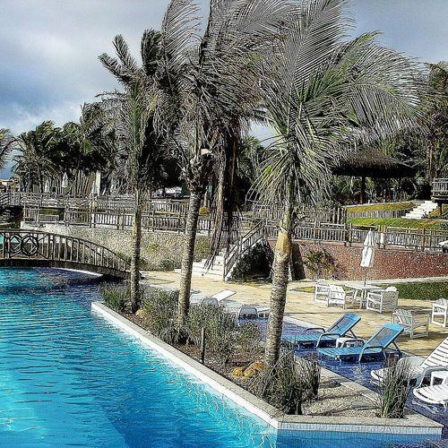 Brasil Swimming Pool Sky Lifewelltravelled Non-urban Scene Blue Oceanpalaceresort Majestic Palm Tree