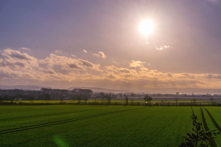 Agriculture Beauty In Nature Day Field Grass Green Color Growth Landscape Nature No People Outdoors Rural Scene Scenics Sky Sun Tranquil Scene Tranquility