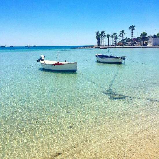 Never wanna leave 💙☀️🌴Lovepuglia Maldive Portocesareo Lecce Beauty Happiness Puglia Sunrise Seaside Sea Skysultans Architecture Interior Interiordesign Ig_tuscany Sea Mare Beautifulitaly Beautyiseverywhere Beauty Travelling Travelshare Travelblog Travels Travelblogger travelpic travelpicture travelitaly travel traveltheworld traveladdicted traveldiary