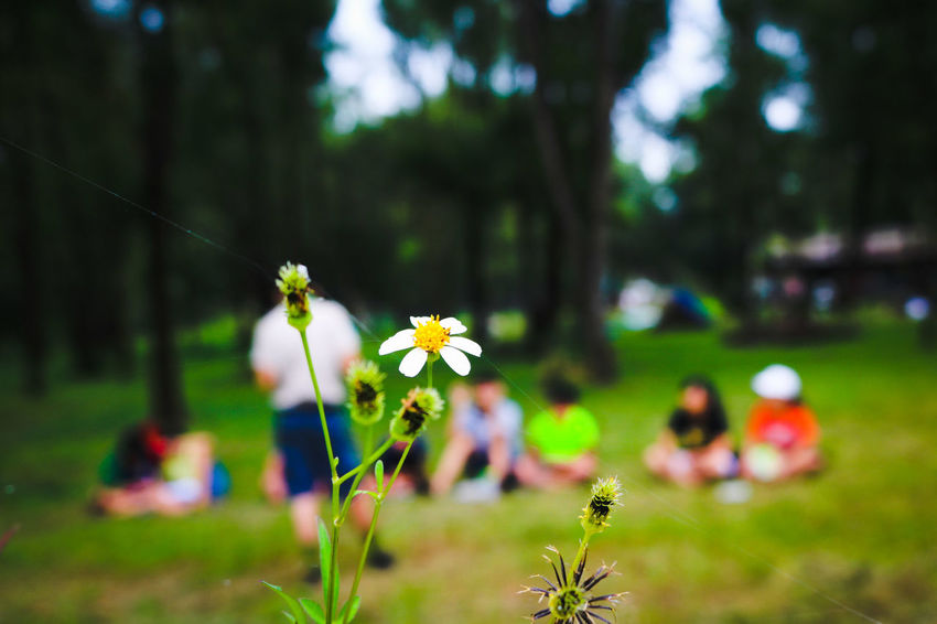 Scout activities Scouts <3 Memories ❤ The Children Laughed Cloud - Sky Promises ♡. Nature