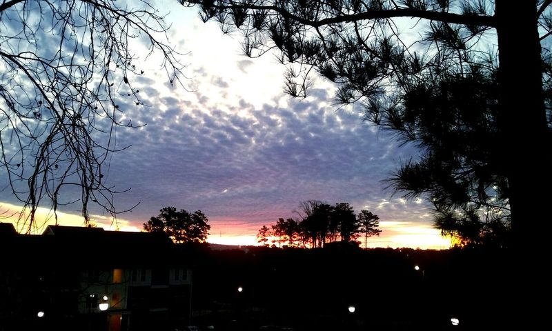 1.15.16 7:10a.m. Sunrise Skyview Skyscape Sky_collection Sky And Clouds Morning Sky It's Friday Friday Morning Window View View From My Bedroom Window Raleigh Northcarolina CeBPhotography