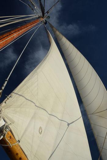 Bellingham, Washington Bellinghm Bay Outdoors Rigging Sailing Sailing Ship Sails Schooner Schooner Zodiac Sky
