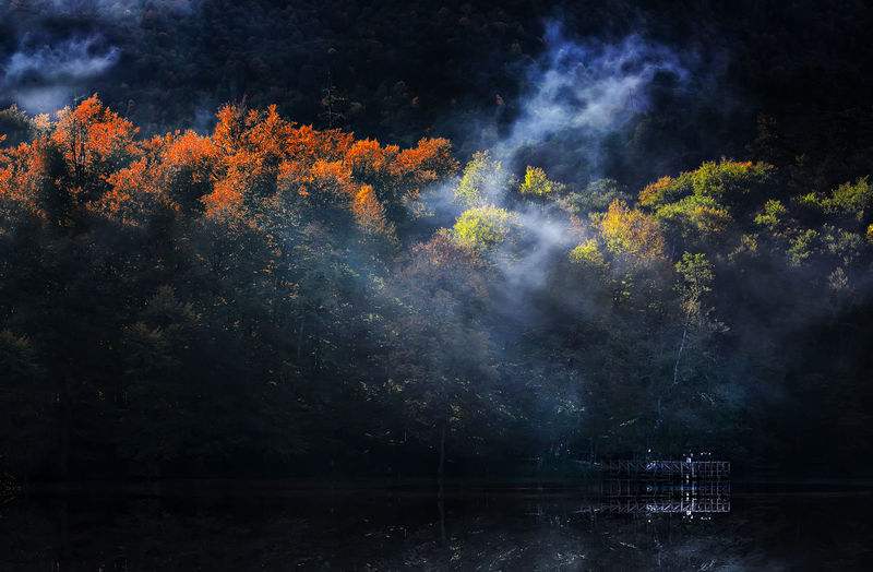 Seven lake / Turkey Agriculture Atmosphere Atmospheric Mood Beauty In Nature Bolu  Cloud Field Fog Glowing Idyllic Lake Landscape Majestic Nature Non-urban Scene Outdoors Rural Scene Scenics Seven Lakes Sky Tranquil Scene Tranquility Tree Turkey Weather