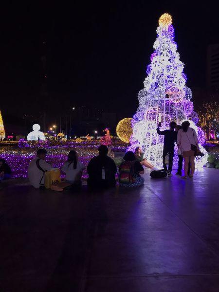 แสงศิลป์ Christmas Decoration Large Group Of People Christmas Lights Women Rear View Leisure Activity Tree Topper Lifestyles Indoors  Tree People