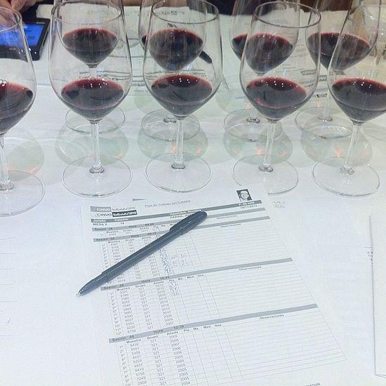 Comenzamos con la sesión de Viños Tintos en Cinve
