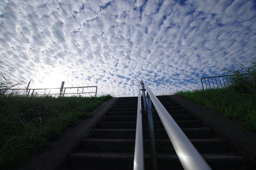 Sky Cloud - Sky Steps 淀川