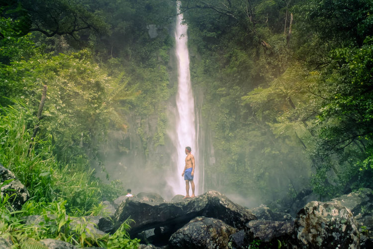 scenic view of waterfall in forest Beauty In Nature Day Flowing Water Forest Full Length Green Color Land Leisure Activity Lifestyles Nature One Person Outdoors Plant Real People Rock Scenics - Nature Standing Tree Water Waterfall Waterfall #water #landscape #nature #beautiful Waterfall In Mountain Waterfall_collection Waterfalls Waterfalls In Philippines