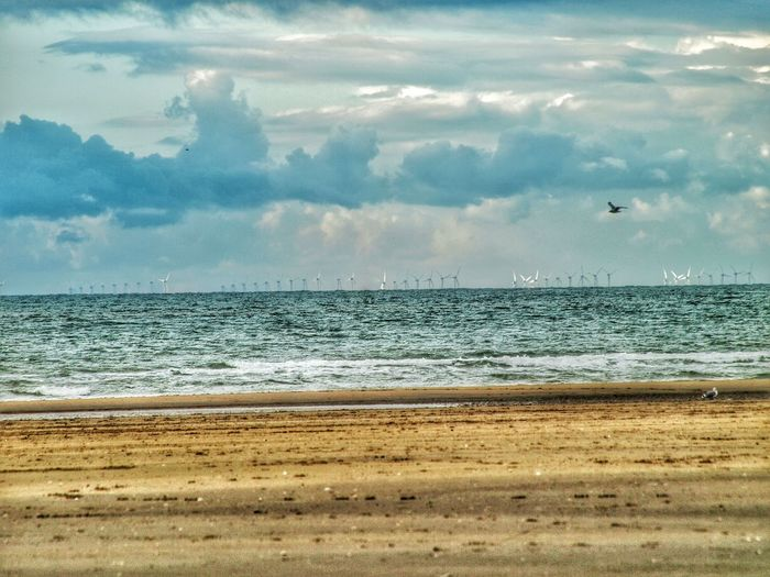 Sea Beach Horizon Over Water Sand Scenics Water Nature Beauty In Nature Shore Sky Cloud - Sky Outdoors Wave Day No People Horizontal Naturephotography Dramatic Sky Cloudscape Sky And Clouds Beach Photography Tranquil Scene Tranquility Storm Cloud Bird