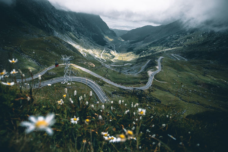 Nature Transfagaraşan Beauty In Nature Beauty In Nature Cloud - Sky Environment Flower Highway Land Landscape Mountain Mountain Range Mountain Road Nature No People Non-urban Scene Outdoors Plant Road Scenics - Nature Sky Tranquil Scene Tranquility Transportation Winding Road The Great Outdoors - 2018 EyeEm Awards