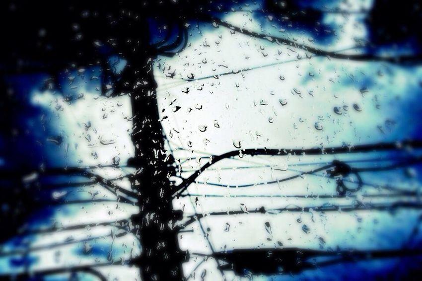 夕立 Rain