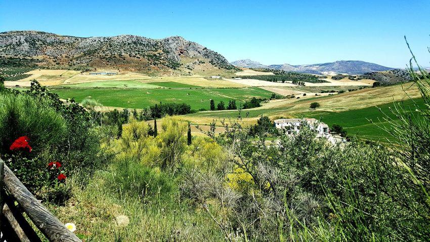 Spain Andalucia